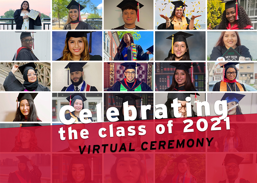 Collage of different graduation pictures